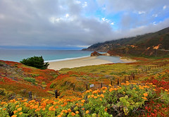 Pacific Coast Highway and Little Sur River (Dave Toussaint (www.photographersnature.com)) Tags: ocean california ca travel sea usa cloud mountain flower blanco nature water dave forest photoshop canon river buzz landscape ventana 1 coast photo los interestingness big interesting highway day photographer pacific cs2 little cloudy central picture august hwy explore route pch cal national adobe pico padres labs sur wilderness sim 2012 topaz adjust toussaint infocus simplify cen denoise 60d photographersnaturecom mygearandme mygearandmepremium flickrstruereflection1