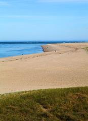 Cape Cod: Chatham's Lighthouse Beach (Chris Seufert) Tags: ocean sea lighthouse beach shark sand capecod christopher chatham seals offseason sharks stockphoto greatwhite stockphotography seufert