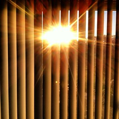 I love when sun comes through the blinds in the morning