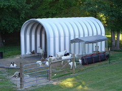 steel-shed-open-ended