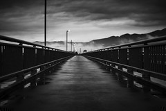 the town across the river (StephenCairns) Tags: bridge blackandwhite bw mist rain japan fog lights streetlights 日本 nocrop 雲 puddles 山 岐阜 gifu aftertherain 橋 motosu 白黒 水たまり 霧 電柱 岐阜県 canon50d stephencairns 50dcanon 本巣市 leavingmotosu thetownacrosstheriver