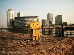 DANBO AT BBC MEDIA CITY (weasteman) Tags: toy dashboard danbo mediacity salforddocks revoltechdanboard minidanbo weasteman danbolove revoltechdanbo projectdanbo