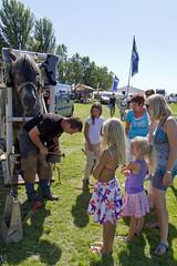 Vestingdagen Hellevoetsluis 2012-9939 (Quistnix!) Tags: horses horse hellevoetsluis 2012 paard paarden paardrijden vestingdagen