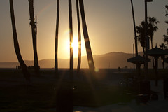 @IMG_4596 (bruce hull) Tags: sanfrancisco california aquarium coast highway chinatown pacific wharf whales coit emabacadero