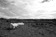 Selatangar (Dag4) Tags: iceland nature landscape beach lava selatangar