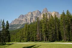 Castle Mountain (Stefan Jrgensen) Tags: canada canadianrockies rockymountains 2013 sony dslra700 a700 bluesky mountains trees castlemountain