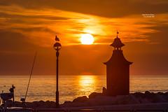 Sunset Over the Adriatic (Algorithms Riven - facebook.com/algorithmsriven) Tags: adriaticsea piran slovenia bird clouds orange rocks sea sun sunset si