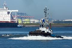 Smit Seine (Peet de Rouw) Tags: tugboat tug sleepboot haven havenrotterdam portofrotterdam port peetderouw denachtdienst canon5dmarkiii europoort rotterdam calandkanaal netherlands holland kotugsmit