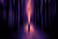 The eternal flame (Ans van de Sluis) Tags: flame portrait woods forest light shadows art fineart ansvandesluis eternal
