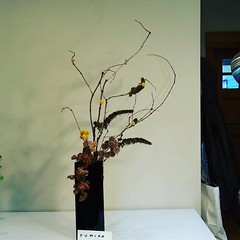 Fumiko's dty material #ikebana