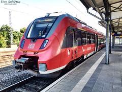 BR442 in Warnemnde 2016 (daiqr.wordpress.com) Tags: br442 nahverkehr db deutschebahn rostock warnemnde