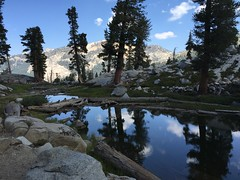 Heather Reflecting Pool (colonelchi) Tags: iphone apple smartphone sequoia sequoianationalpark sequoianationalmonument mountain mountains sierramountains mountainrange vacation summer summervacation bigmeadow meadow trip hiking cabin familycabin nationalpark national monument