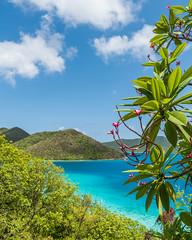 Virgin Islands National Park (Mark Willard Photography) Tags: usvi us virgin islands national park landscape beautiful paradise nikon d810 island st saint john thomas nps natural nature ocean atlantic caribbean