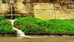 effetto...pioggia (tonotto_85) Tags: green nature natura verde acqua water rain pioggia waterfall cascata