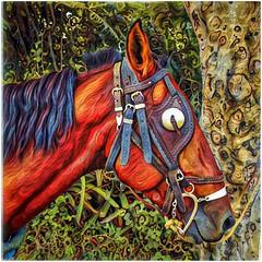 The Horse (plismo) Tags: guardalavaca holguin cuba