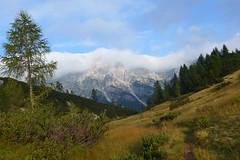 prati a nord del rifugio (Tabboz) Tags: montagna dolomiti sentieri cima vetta trekking boschi mugo rifugio panorama valle roccia nuvole