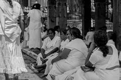 Pilgrim (Aadil Chouji Schiffer) Tags: kandy srilanka people person street streetphotography photography srilankans lankans sri lanka humans human ceylon kandyan temple tooth relic pilgrim pilgrims d7200 nikond7200 sigma 1750 sigma1750 f28 sigmalens nikonsigma bw black white bnw bandw blackwhite blackandwhite blacknwhite mono monochrome n b w