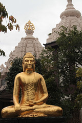 Kawasaki Daishi | Golden Buddha (Toni Kaarttinen) Tags: japan  japonia    jap japonsko jaapan  japani japon xapn    japn jepang an tseapin giappone  japna japonija  japo  japonska japn hapon  japonya nht bn japanese kawasaki spring daishi kawasakidaishi buddha golden