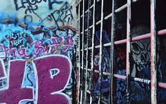fence (hshatlden) Tags: fencedin urbanart urbanexploring nikontop nikonphotograph nikond3100 nikon minnehaha 2016 mn minnesota minneapolis