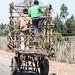 The carts of Oromia