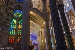 Sagrada familia.Gaudi (P.Larrea) Tags: barcelona sagradafamilia templo gaudi cataua espaa arquitectura color vidrieras