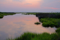 Assateague Island: Calm evening (Shahid Durrani) Tags: island maryland national seashore assateague