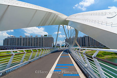 Harry_04476,,,,,,,,,,,,,,,, (HarryTaiwan) Tags: bridge taiwan                    5d2   harryhuang   newtaipeicity hgf78354ms35hinetnet