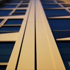 endless view (loop_oh) Tags: windows tower window facade germany deutschland hessen frankfurt fenster main bank messe frankfurtammain frankfurtmain fassade roemer metropole hochhaus rmer pollux 185 mainhattan eintracht frankfurtam tower185