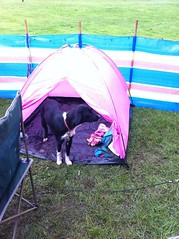 7581178348 50e3d2f66e m FRC Love In   Camping In UK is, WET