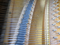 Inside the Mind of a Piano (Lucyrk in LA) Tags: music playing macro hair photography restaurant hotel photographer play kentucky ky piano photograph sound blonde instrument louisville inside suite galthouse rivue