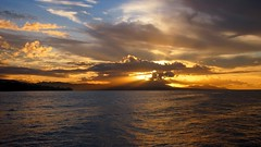 Honiara's boldest (sPacific details (very limited internet)) Tags: sunset water southpacific solomons solomonislands bestcapturesaoi