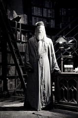 The wizard is still watching you.... (I Carvell) Tags: wizard magic harrypotter dumbledore