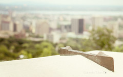 Montreal from viewpoint (Gabriela Tulian) Tags: city urban downtown bokeh montreal pastels viewpoint