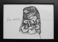 Cria Cuervos (TURKESA (old profile)) Tags: flower design drawing crow cuervo cria turkesa