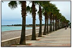 Platja del Marjal, les Cases d'Alcanar (Jess Cano Snchez) Tags: espaa beach canon spain playa catalonia catalunya catalua platja eos20d alcanar efs1855 espanya terresdelebre montsia marjal elsenyordelsbertins tarragonaprovincia lescasesdalcanar