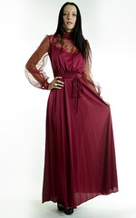 Victorian Inspired Burgundy Chiffon & Ornamental Lace Satin Gown Full Length Front Displayed (mondas66) Tags: ruffles dress lace victorian chiffon dresses romantic gown elegant gowns ornate satin ornamental lacy sheer frilly elegance ruffle frills frill ruffled lacework frilled frilling frillings befrilled