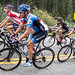 Alex Howes, David Zabriskie - USA Pro Challenge, stage 4