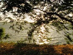 Tissa Wewa (Lake) (Janesha B) Tags: nature unescoworldheritagesite srilanka paddyfields anuradapura putlam tissawewa giantlakes ancientdagoba