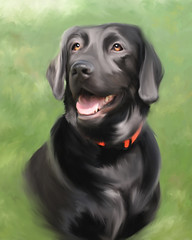 Huckleberry (Theresa Thompson) Tags: dog black digital painting lab labrador canine retreiver