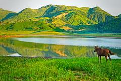 Alapasco Lake (Bert Esposado) Tags: lake iloilo philippines nature sunrise camping