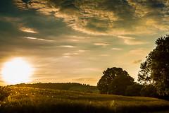 Sonnenuntergang (Fotos aus OWL) Tags: sonnenuntergang erntezeit landwirtschaft