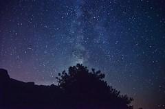 Clear Sky #night #summer #beach #sinop #akliman #turkey #hamsilos #astrology #astrophotography #astronomy #longexposure #space #nightphotography #nature #dark #travel #landscape (canerryilmazzz) Tags: night summer beach sinop akliman turkey hamsilos astrology astrophotography astronomy longexposure space nightphotography nature dark travel landscape