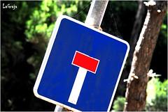 DSC_0001w (5) (LAGRAJA) Tags: wood bosque seal trafico sealdetrafico trafficsing
