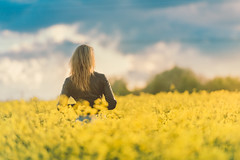 18 (Wind's Song) Tags: commercialphotography edgregory flower flowers free freestockphotos girl publicdomain spring stockimages stockphoto stockphotography stockphotos stokpic summer sunset woman yellow background blond field flare jacket leather nature outside person sun sunrise