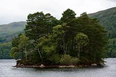 Island - loch catherine (fxdx) Tags: loch catherine island tree scotland nex6