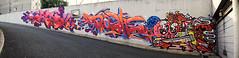 Defy   Dashe    Bbar (HBA_JIJO) Tags: streetart urban graffiti vitry vitrysurseine art france hbajijo wall mur painting letters skull peinture lettrage lettres lettring writer paris94 spray panorama thebullshitters mosdefynite cigarette bbar bbarie dashe