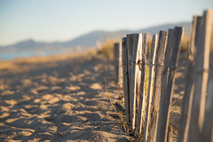 Happy beach fence (Nathalie Le Bris) Tags: happy fence beach verja playa plage sunset atardecer dof bokeh