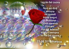 La via del cuore (Poetyca) Tags: featured image immagini e poesie sfumature poetiche poesia