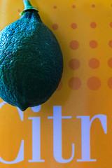 Citrus 2.0 (milmonfharrison) Tags: lemon close fruit food color indoor vibrant highcontrast 50mmf18 shadow lightandshadow citrus