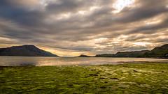JHF0003974 (janhuesing.com) Tags: rot inverie scotland wildlife hiking highlands mallaig knoydart landscape nature outdoor